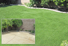 before and after lawns